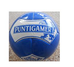 Refernenzen_Puntigamer
